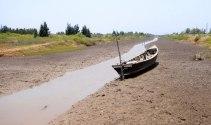 Hỗ trợ 4 tỷ đồng cho 5 tỉnh ĐBSCL chống hạn, xâm nhập mặn