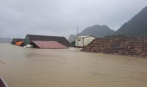 Hỗ trợ lãi vay cho người dân khắc phục hậu quả mưa lũ